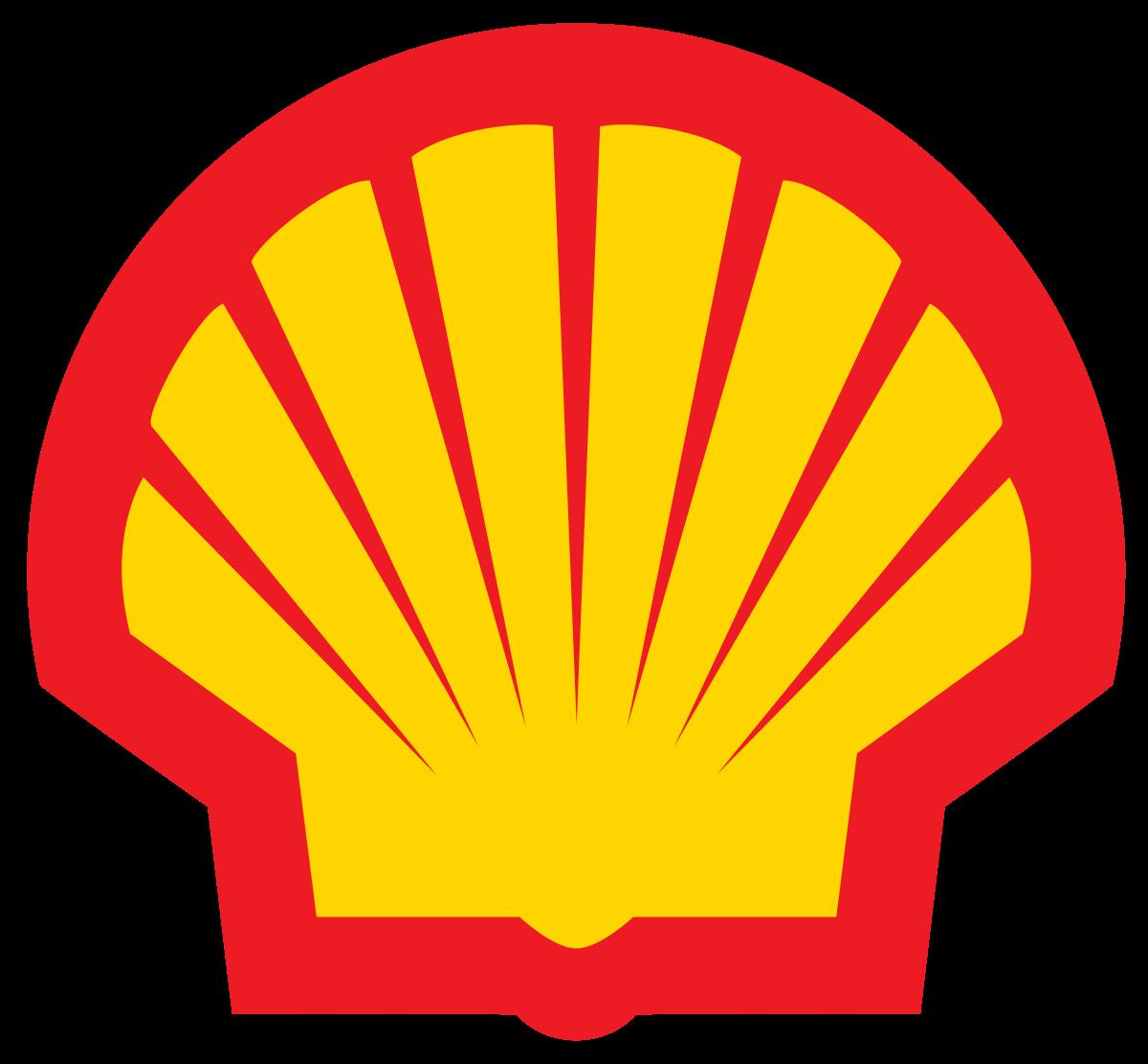Shell Web Design and SEO